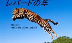 Year of the Leopard