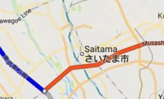Thursday - Saitama and Little Trees