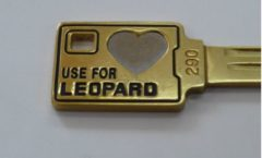 Love Leopard key!!!