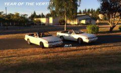 Year of the Vert