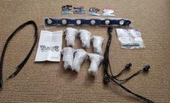 Project Leopard - R35 coil packs for RB25det upgrade